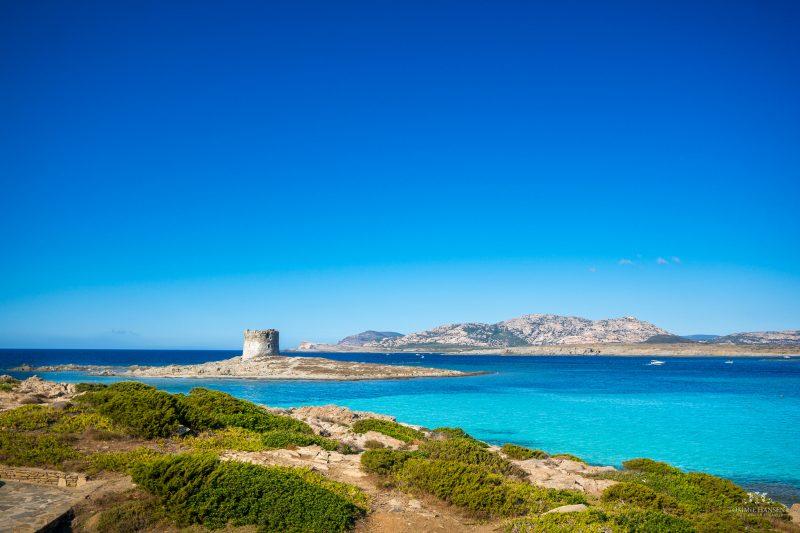 Sardinia VINO SARDO